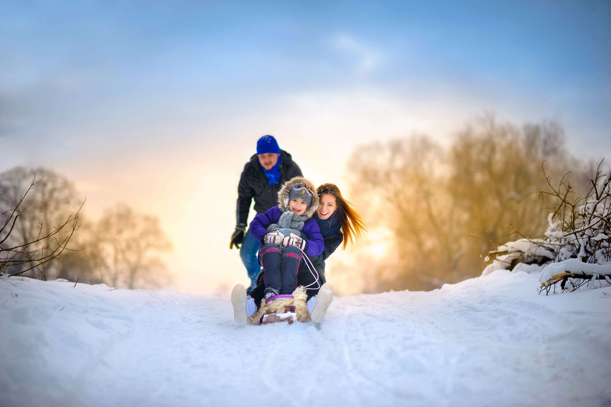 family rides the sledge in the wood